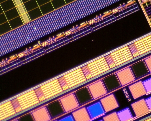 Dino-Lite AM4515T5 - EDGE